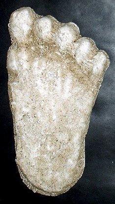 bigfoot footprints