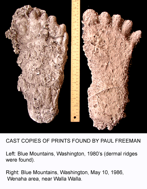 sasquatch bigfoot footprints