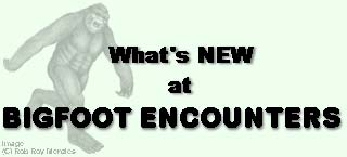What's New at Bigfoot Encounters